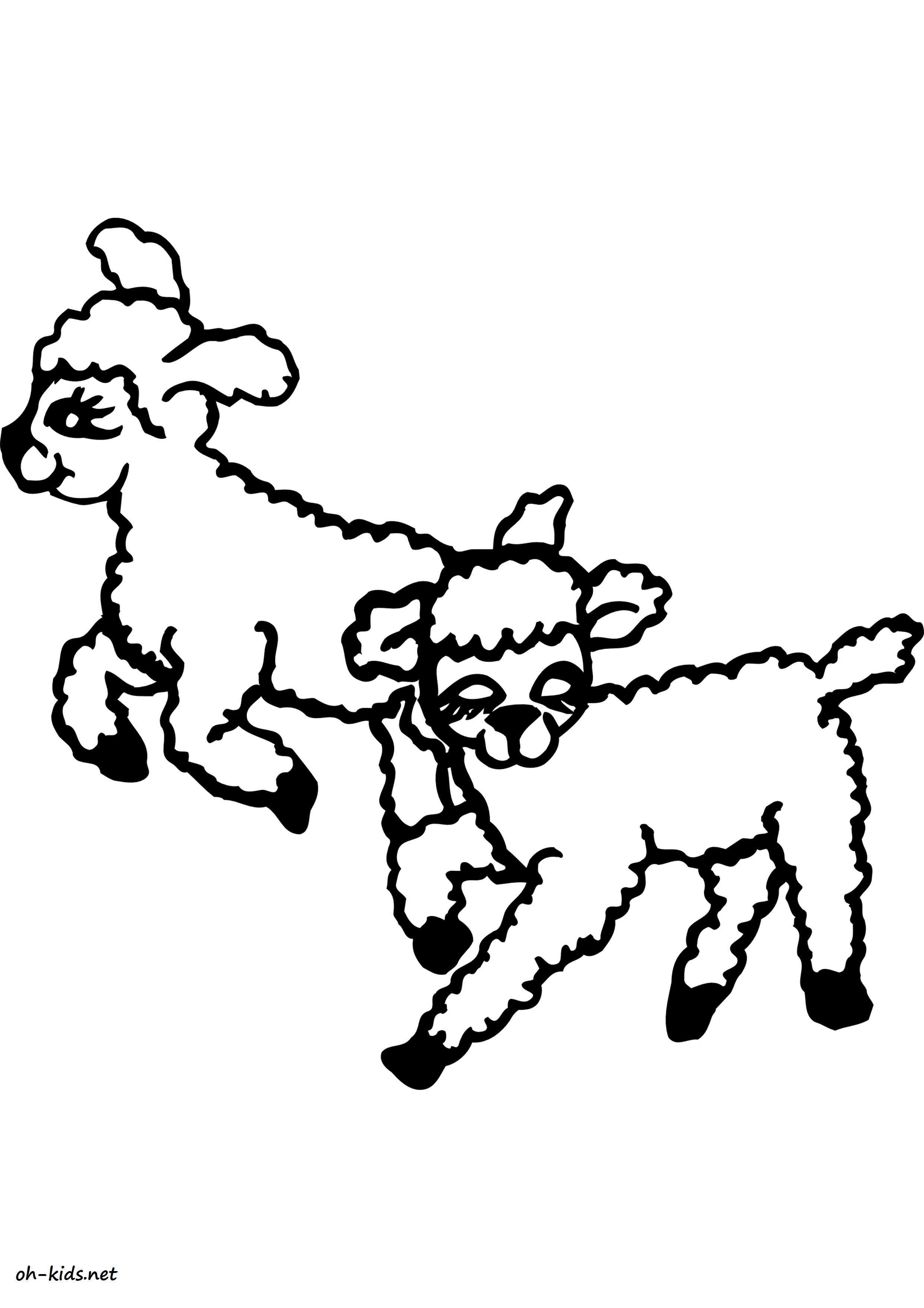 Agneau dessin coloriage - Dessin agneau ...