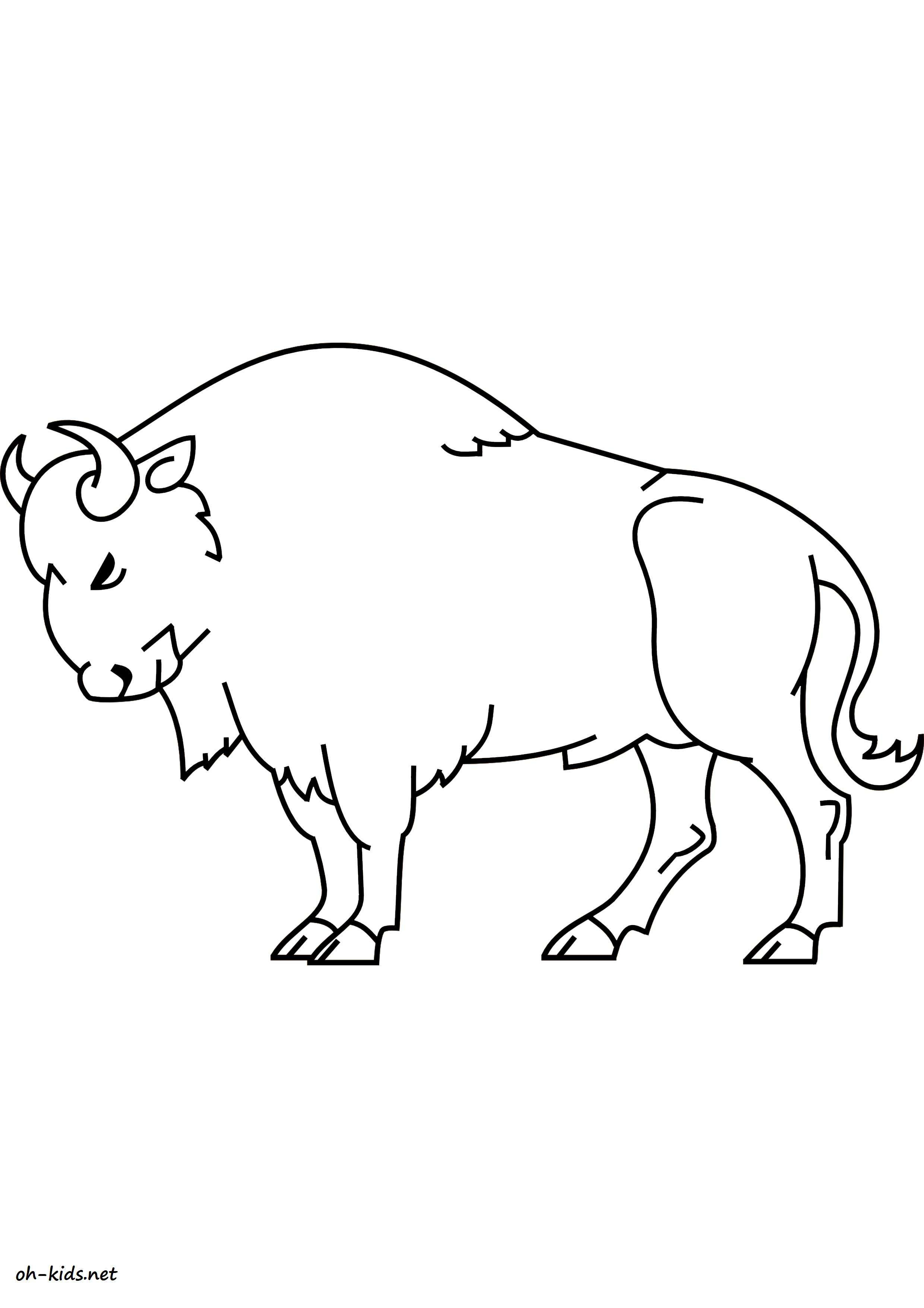 Coloriage bison oh kids fr - Image de coloriage ...