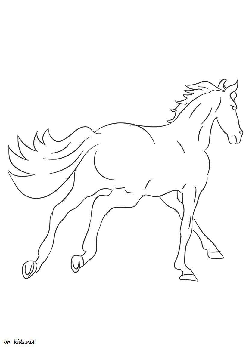 Coloriage cheval page 5 of 7 oh kids fr - Dessin a colorier cheval ...
