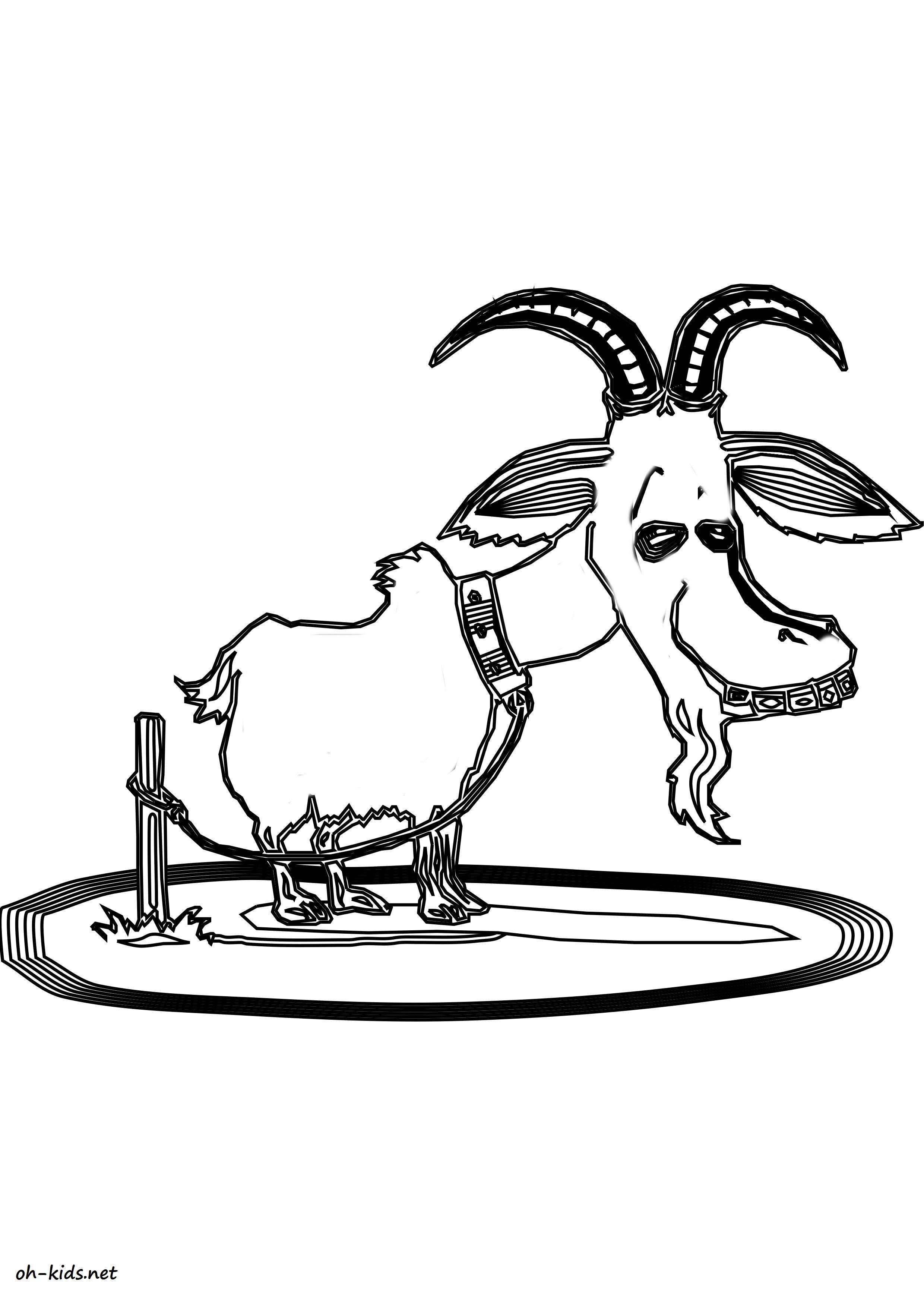 Coloriage chèvre - oh Kids FR