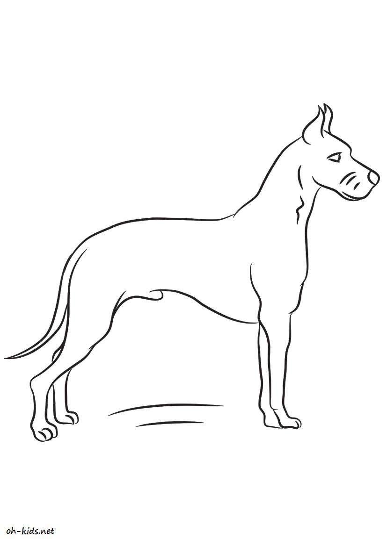 Dessin 40   Coloriage chien à imprimer   Oh Kids.net