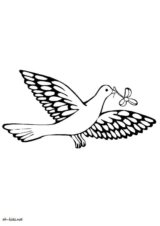 un joli coloriage colombe - Dessin #375