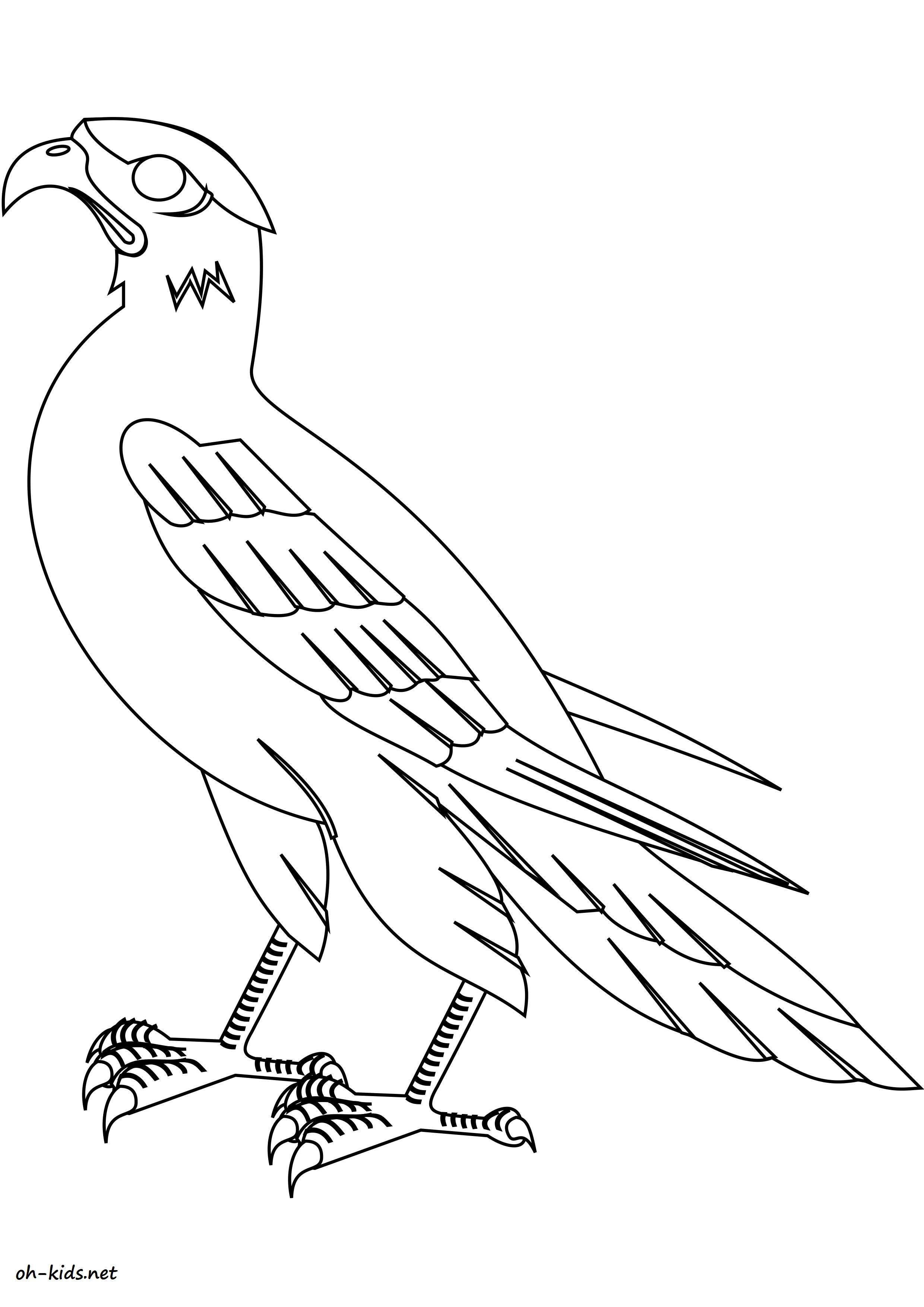 Coloriage faucon oh kids fr - Dessin de faucon ...