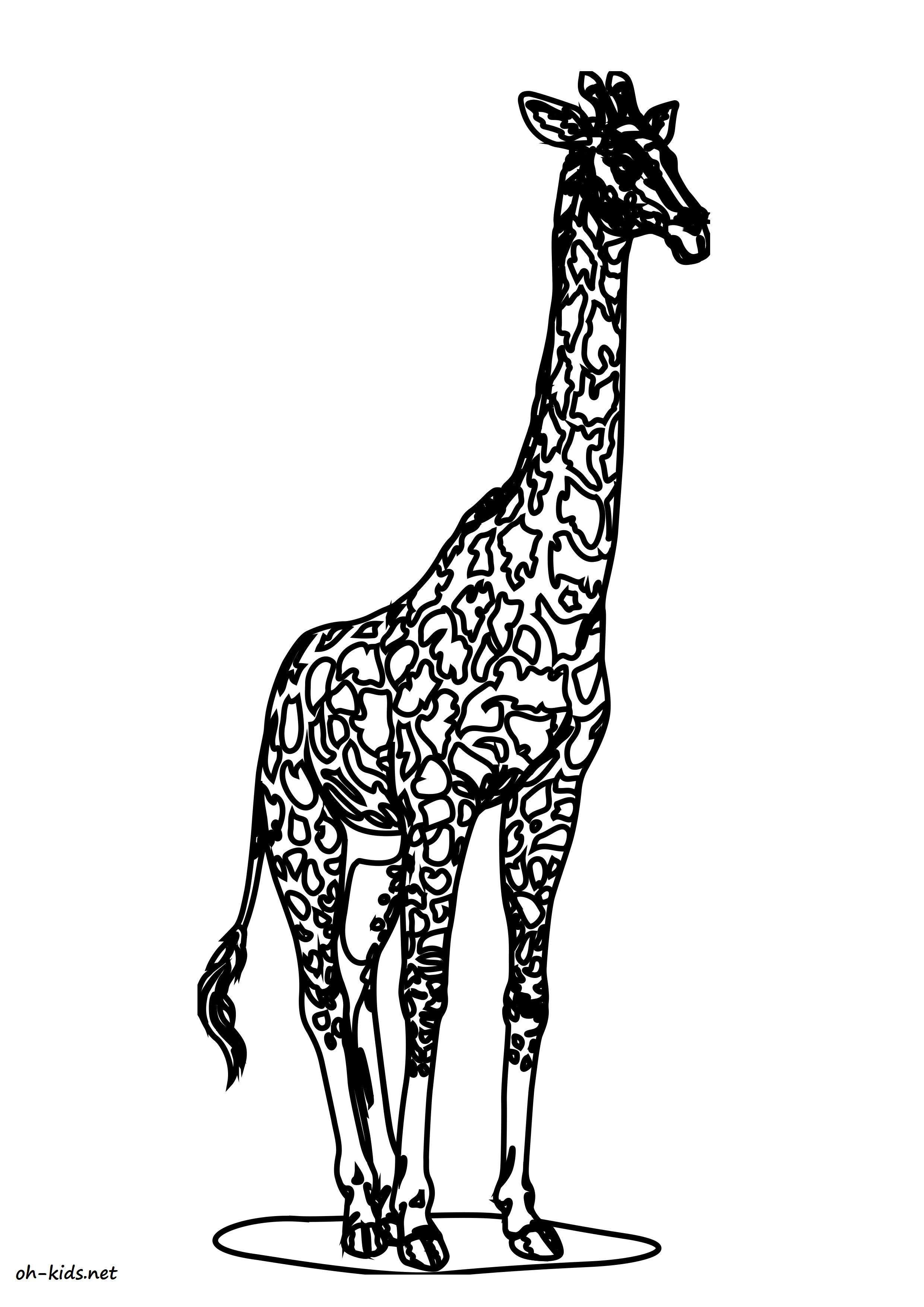 Meilleur De Image Girafe A Imprimer