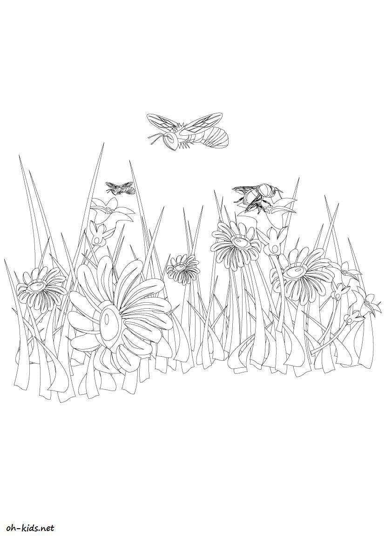 Dessin #432 - Coloriage jardin de fleurs à imprimer - Oh ...
