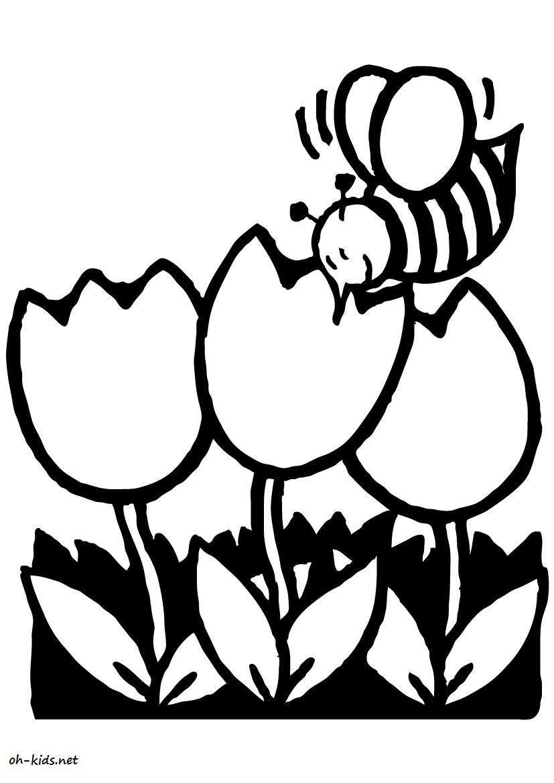 Dessin #433 - Coloriage jardin de fleurs à imprimer - Oh-Kids.net