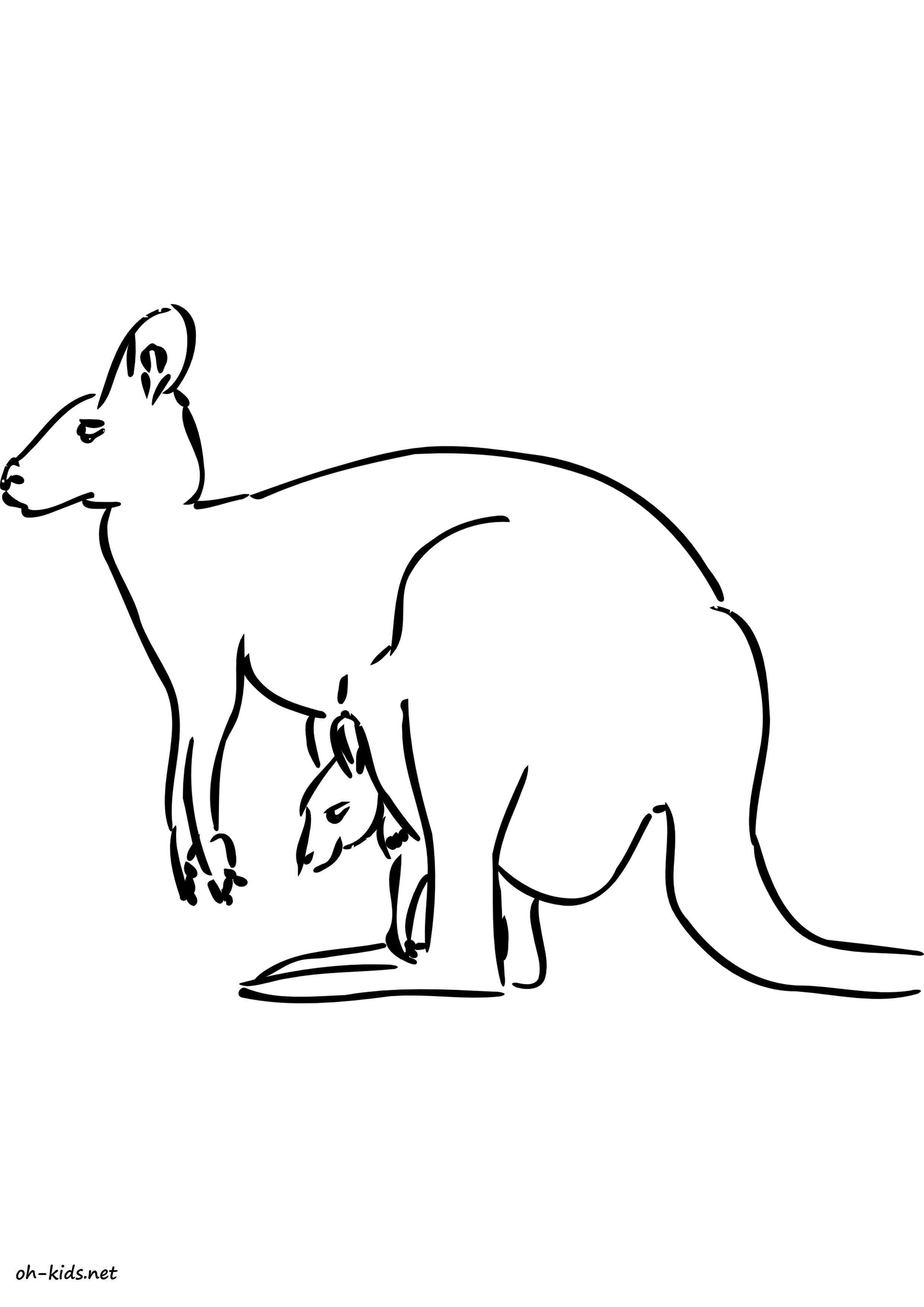 coloriage kangourou a imprimer - Dessin #1634