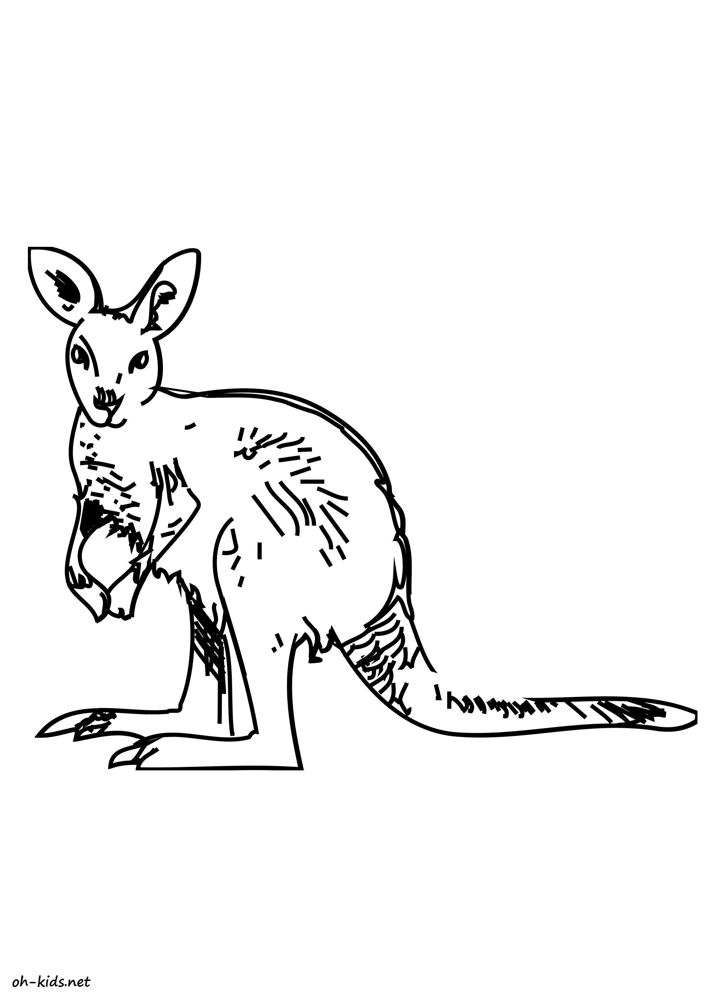 Dessin kangourou à colorier et imprimer - Dessin #1630
