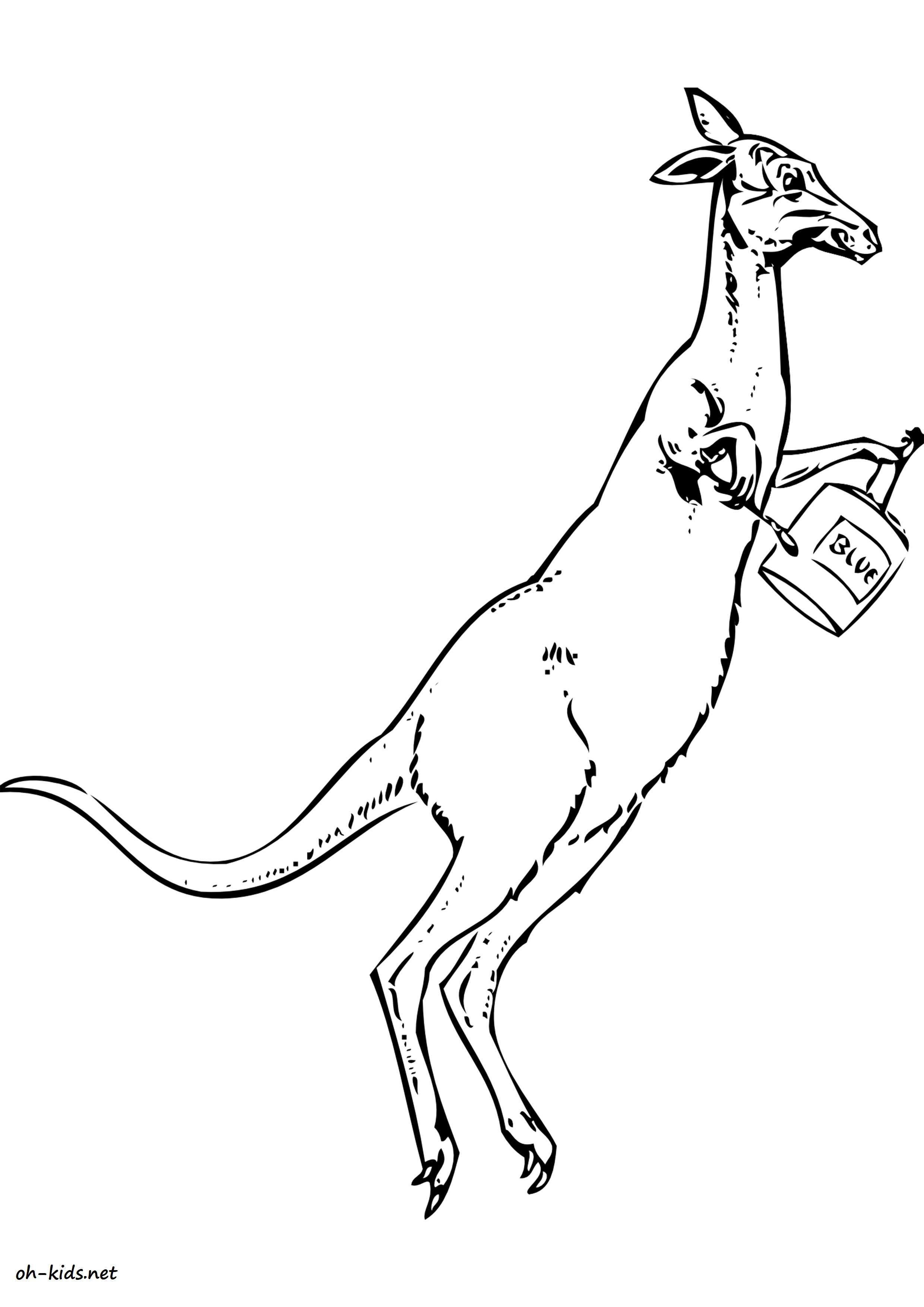 dessin gratuit de kangourou a imprimer - Dessin #1631