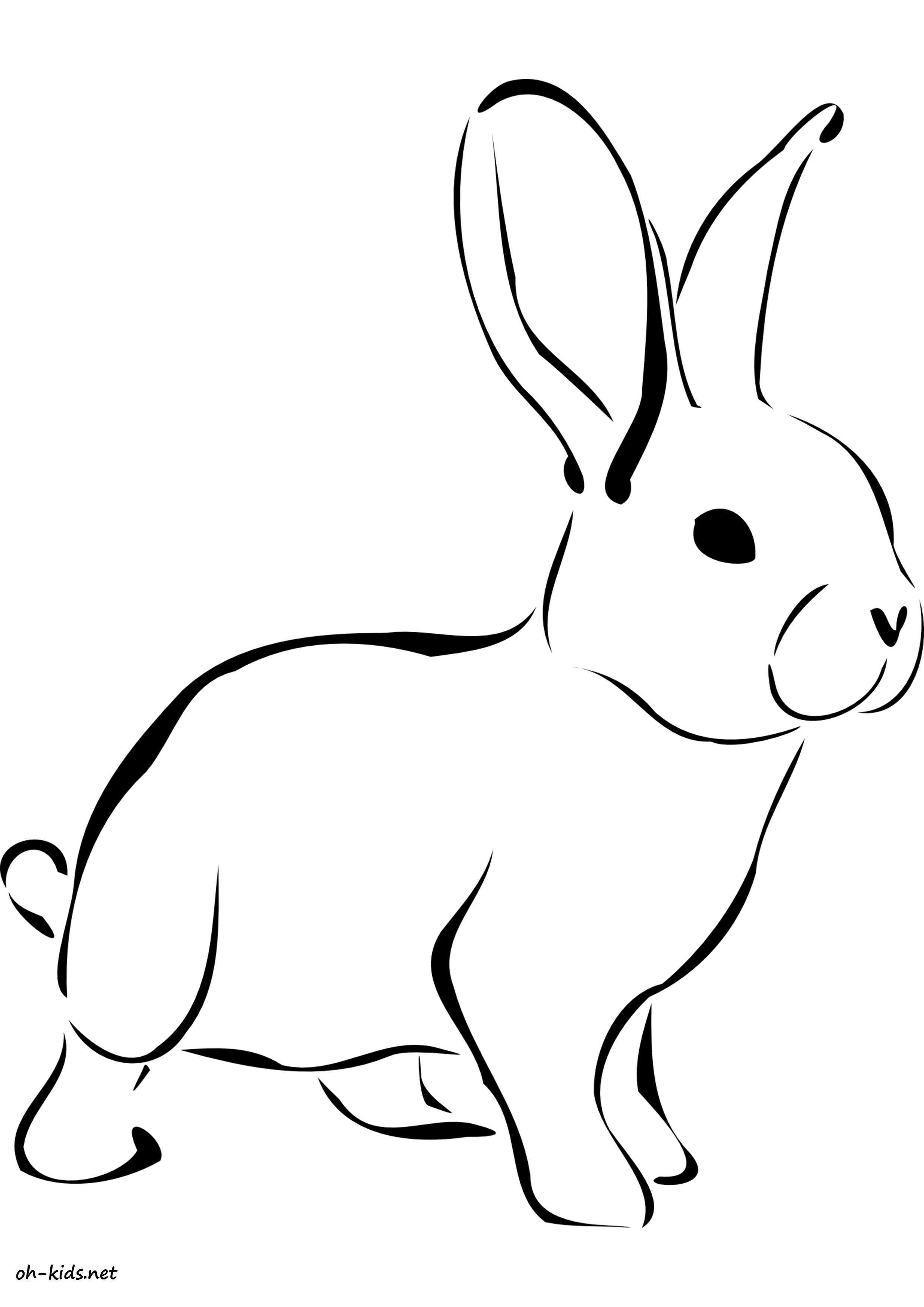 dessin gratuit lièvre a imprimer - Dessin #1635