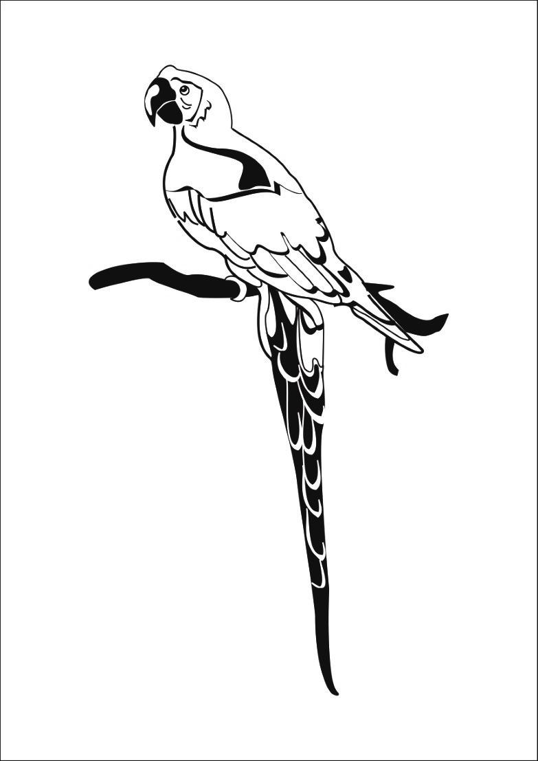 Coloriage perroquet oh kids fr - Perroquet a imprimer ...