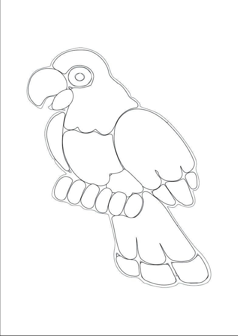 Dessin un perroquet dessins de perroquets - Dessins de perroquets ...