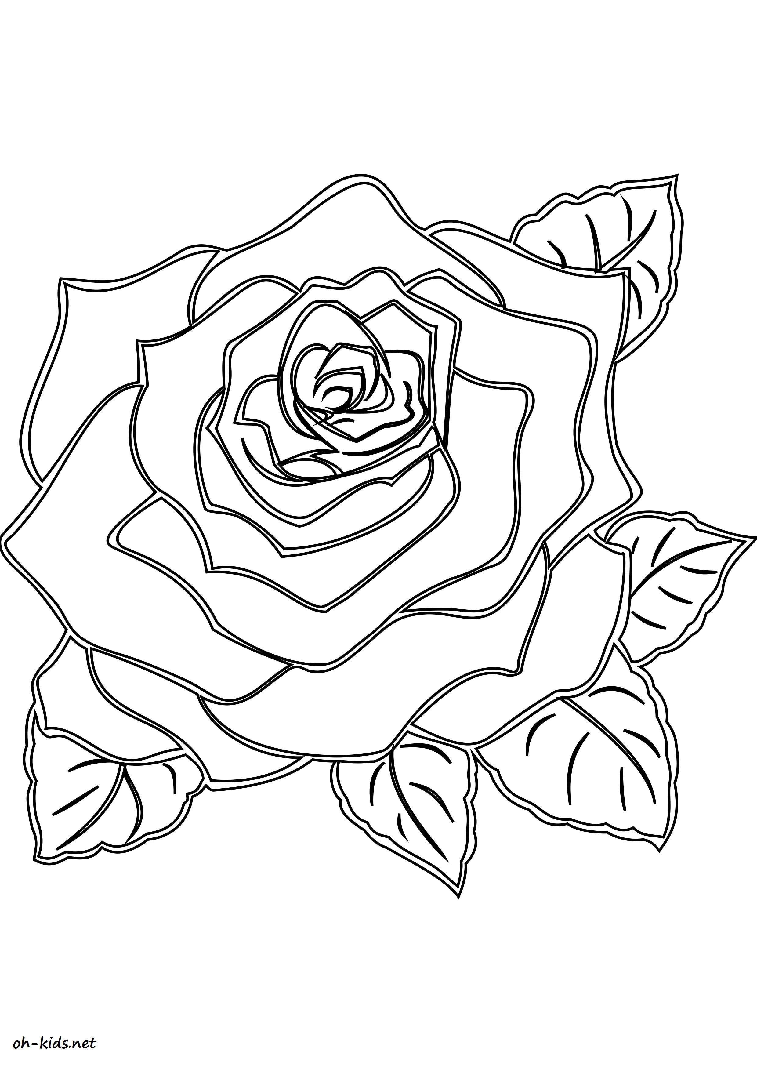 Image de roses a imprimer et colorier - Dessin #1464