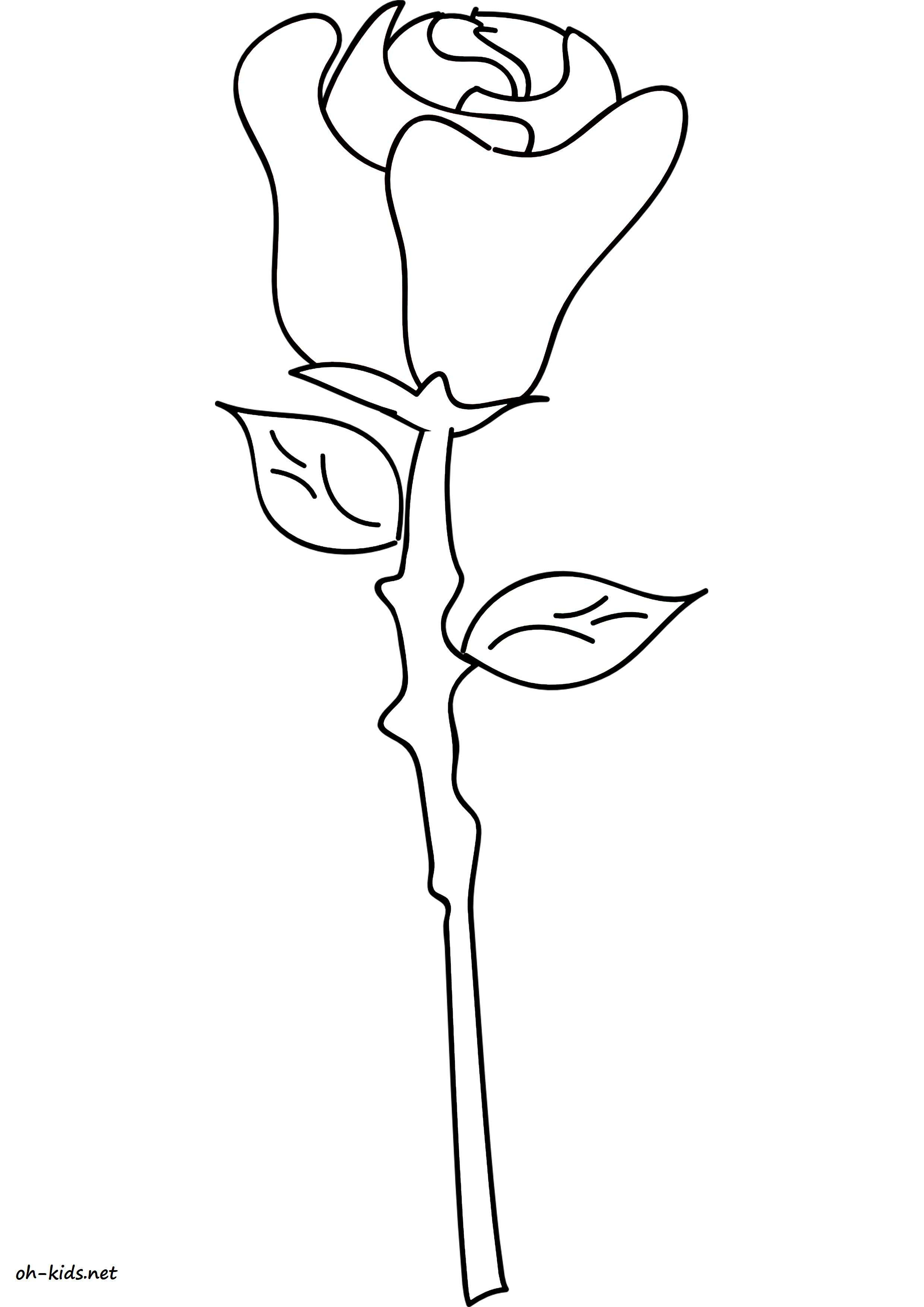coloriage roses - Dessin #1470