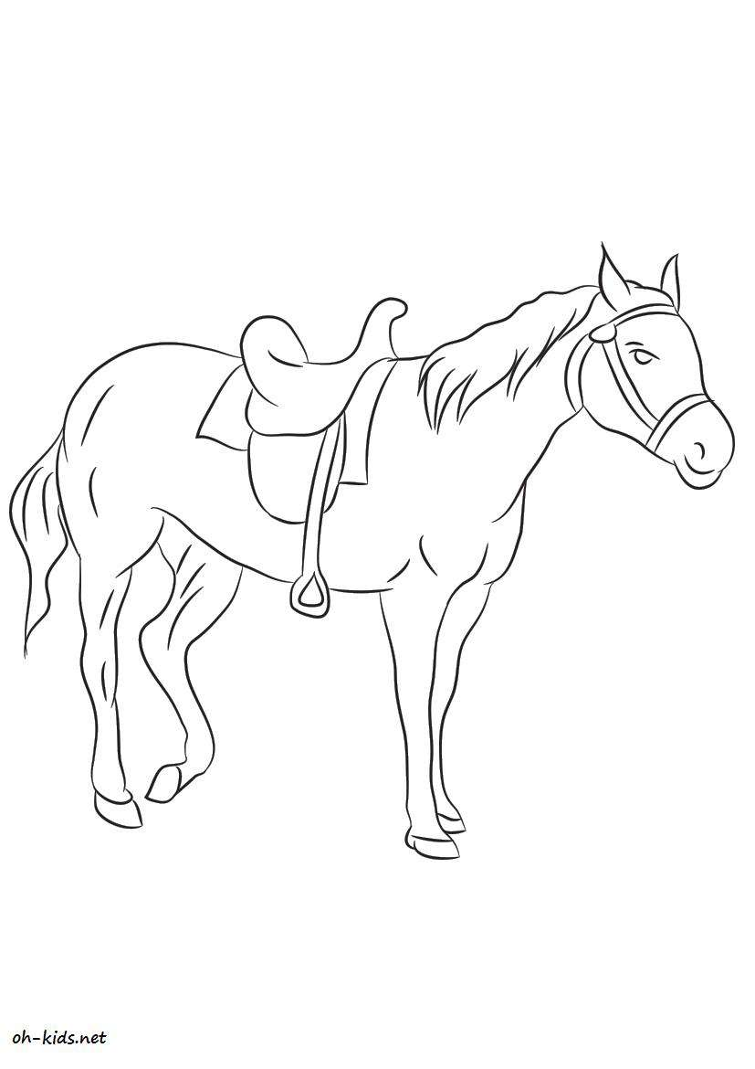 Coloriage cheval - Page 5 of 7 - oh Kids FR