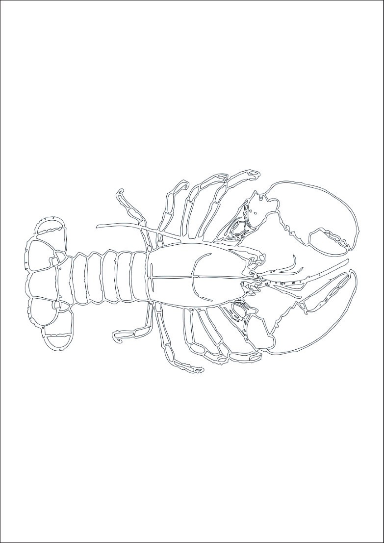 Coloriage homard - oh Kids FR